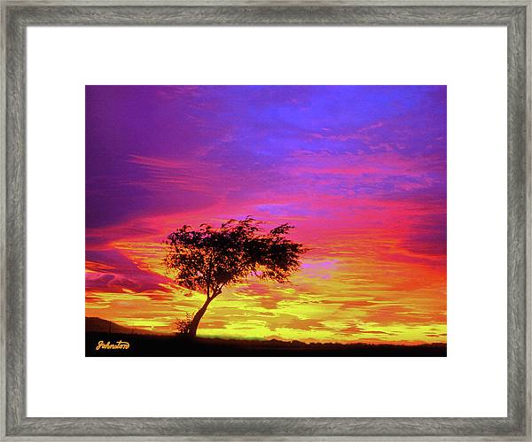 Leaning Tree At Sunset Framed Print