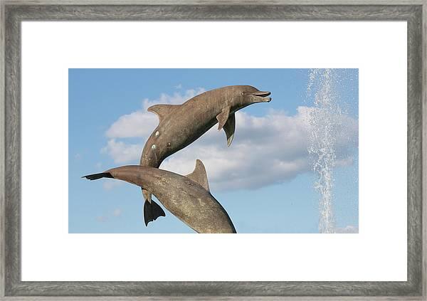 Leap For Joy Framed Print