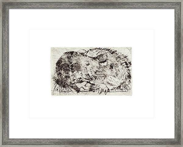 Learning To Love Rats More #5 Framed Print