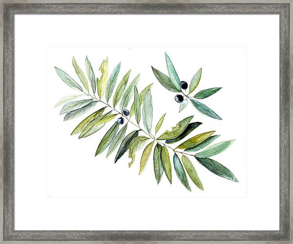 Leaves And Berries Framed Print