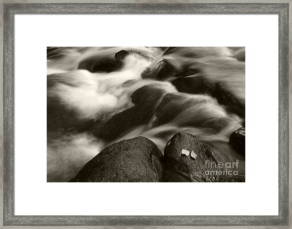 Leaves And Waterfall Framed Print