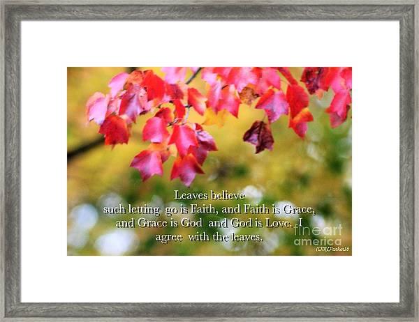 Leaves Believe Framed Print
