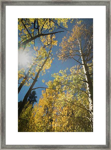 Leaves Of Fall Framed Print