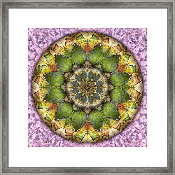 Leaves Of Glass Framed Print