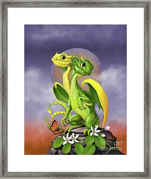 Lemon Lime Dragon Framed Print
