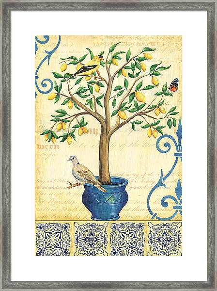 Lemon Tree Of Life Framed Print