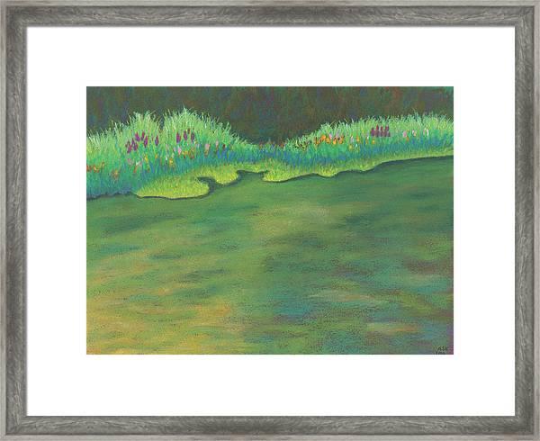 Lenox Audubon Pond 3 Framed Print