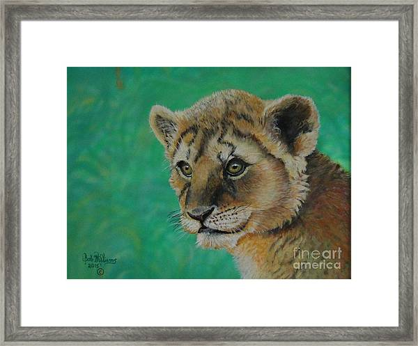 Leonidas   The Young Lion King Framed Print