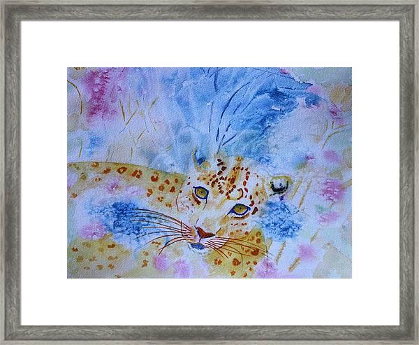 Leopard Hide And Seek Framed Print