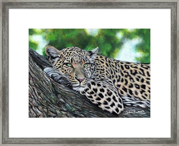 Leopard On Branch Framed Print