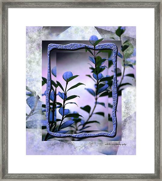 Let Free The Pain Framed Print