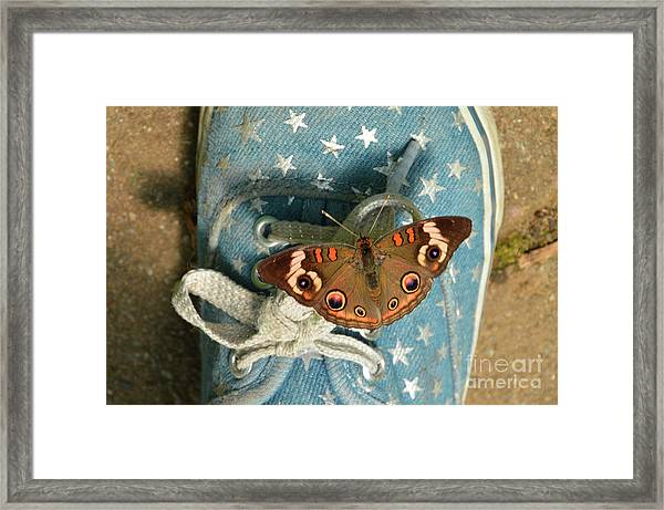 Let Your Spirit Fly Free- Butterfly Nature Art Framed Print