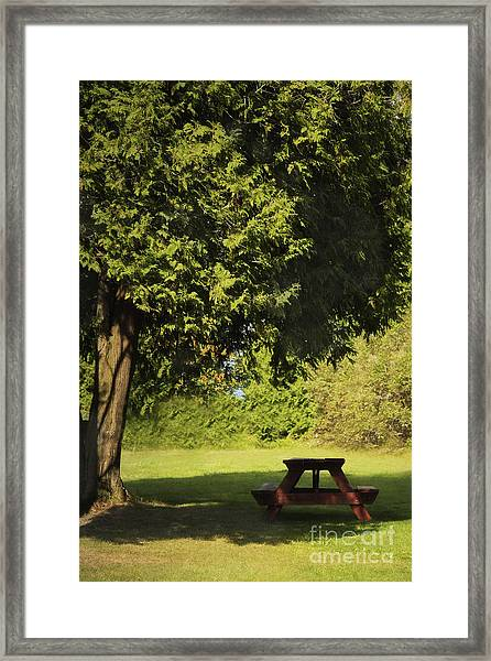 Let's Have A Picnic Framed Print
