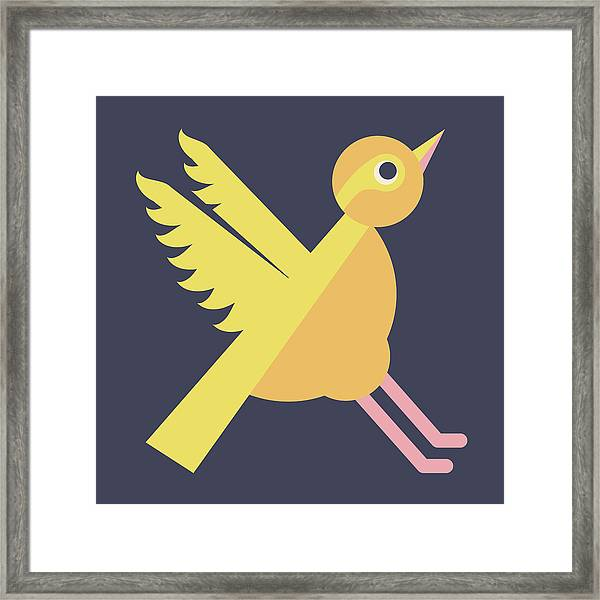 Letter X - Animal Alphabet - Xenops Monogram Framed Print