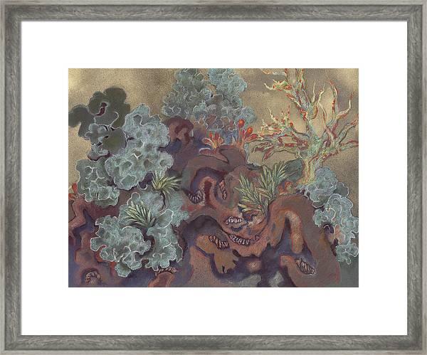 Lichen Landscape Framed Print
