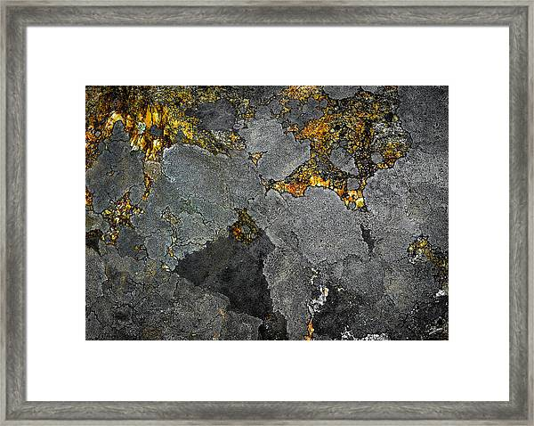 Lichen On Granite Rock Abstract Framed Print