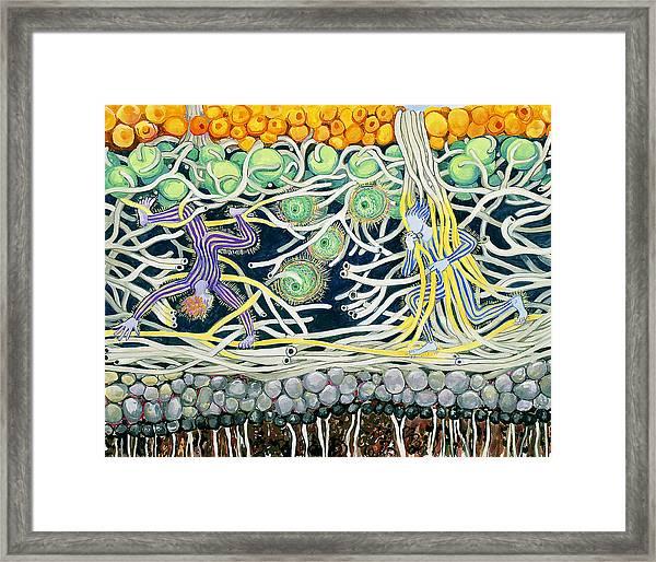 Lichen Playground Framed Print