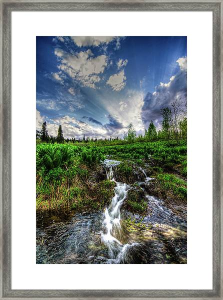 Life Giving Stream Framed Print