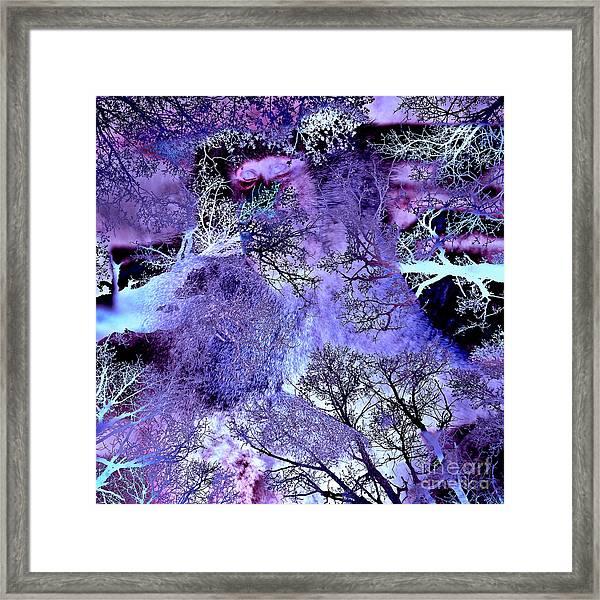 Life In The Ultra Violet Bush Of Ghosts  Framed Print