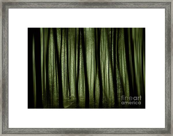 Light In The Darkness Framed Print