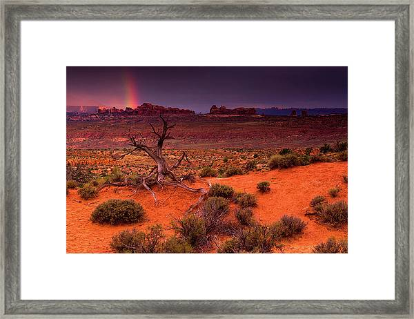 Framed Print featuring the photograph Light Of The Desert by John De Bord