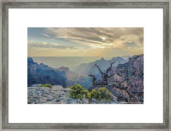 Light Seeks The Depths Of Grand Canyon Framed Print
