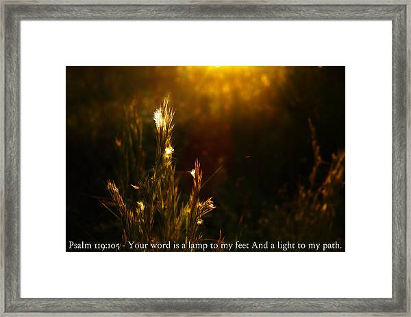Light To My Path Framed Print by Roberto Aloi