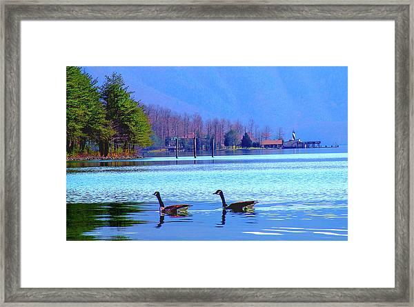 Lighthouse Geese, Smith Mountain Lake Framed Print