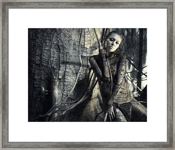 Lignum Framed Print