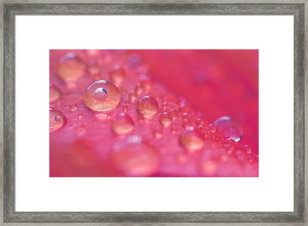 ...like A Dream Framed Print