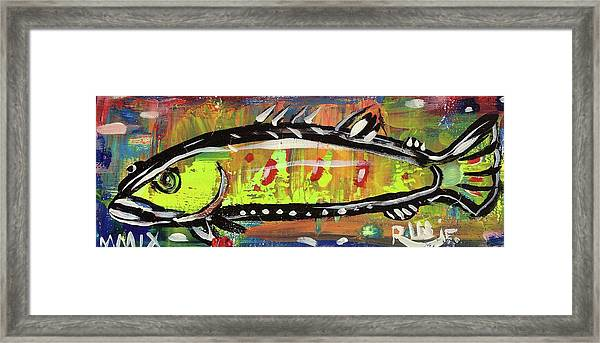 Lil Funky Folk Fish Number Twelve Framed Print