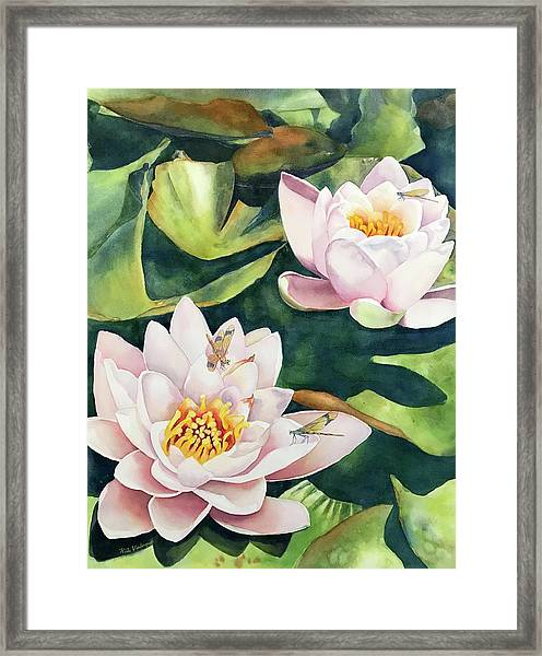 Lilies And Dragonflies Framed Print