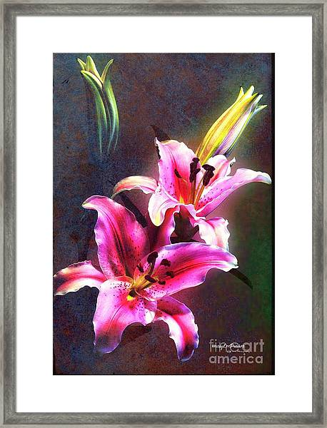 Lilies At Night Framed Print