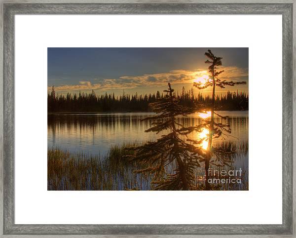 Lily Lake Sunset  1 Framed Print