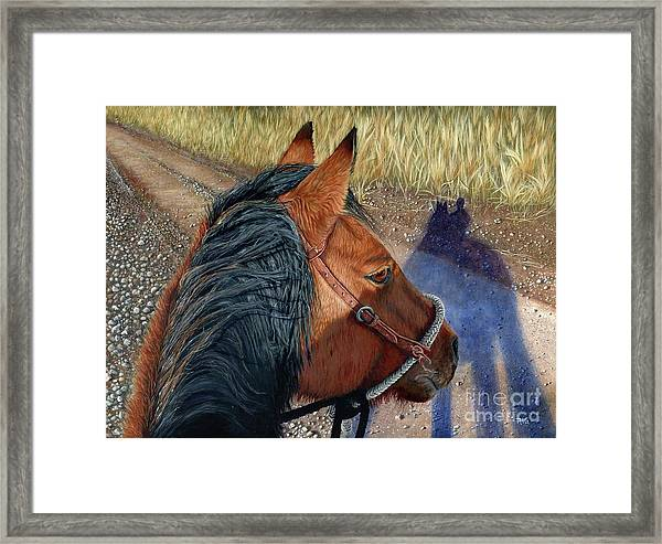 Lily's Perspective Framed Print