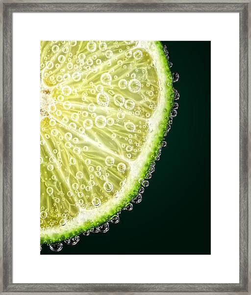 Lime Slice Framed Print