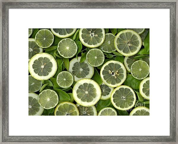 Limons Framed Print