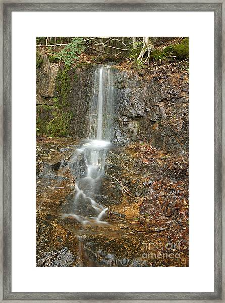 Lincoln Woods - White Mountains New Hampshire Usa Framed Print