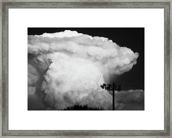 Framed Print featuring the photograph Lincolns Profile by Scott Cordell
