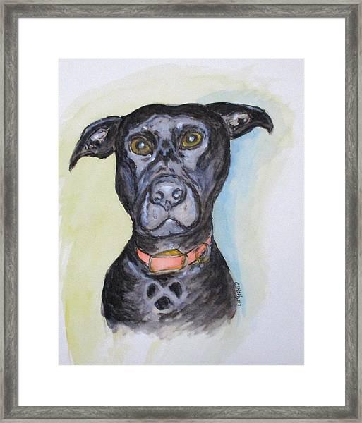 Linda's Doggie Framed Print