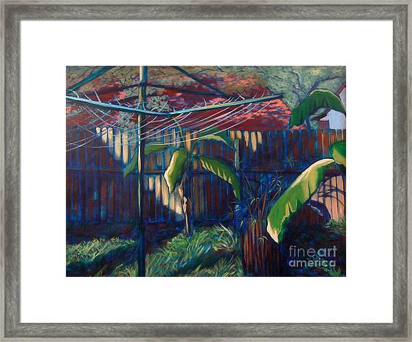 Lines And Light Framed Print