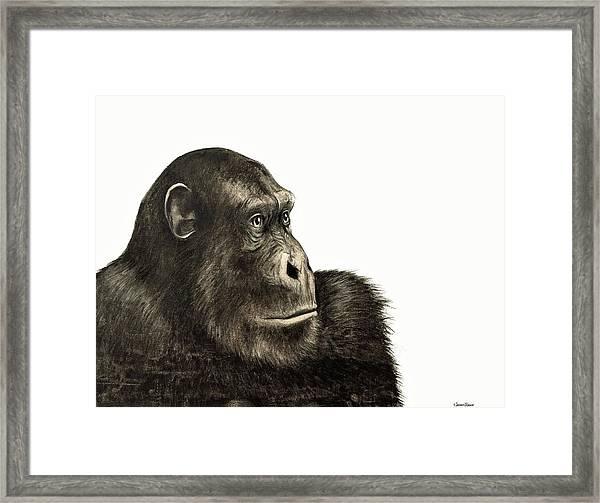 Linked Framed Print