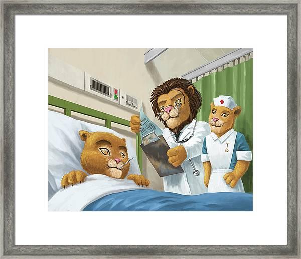 Lion Cub In Hospital Framed Print