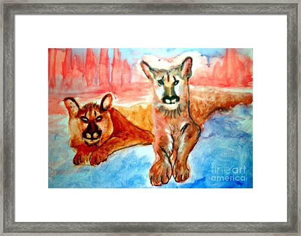 Lion Cubs Of Arizona Framed Print