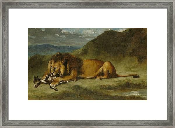 Lion Devouring A Goat Framed Print