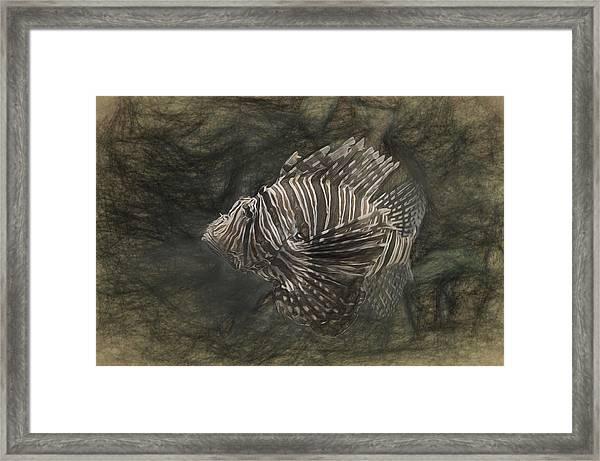 Lionfish Framed Print
