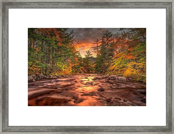 Liquid Gold Of New Hampshire Framed Print