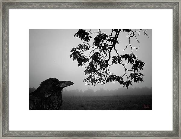 Listening To The Leaves Framed Print