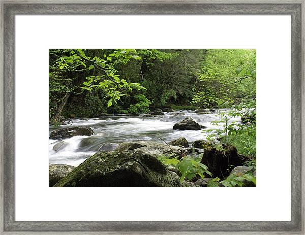 Litltle River 1 Framed Print