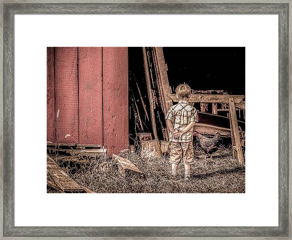 Little Boy And Rooster Framed Print